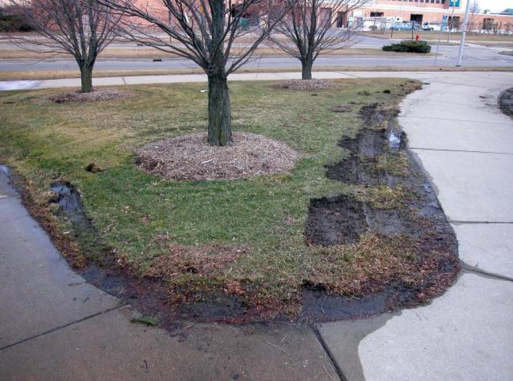 snow plow damage 2