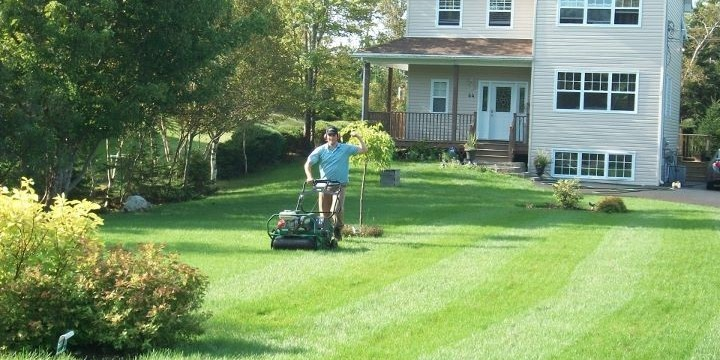 Aerating is one of the most beneficial lawn services.