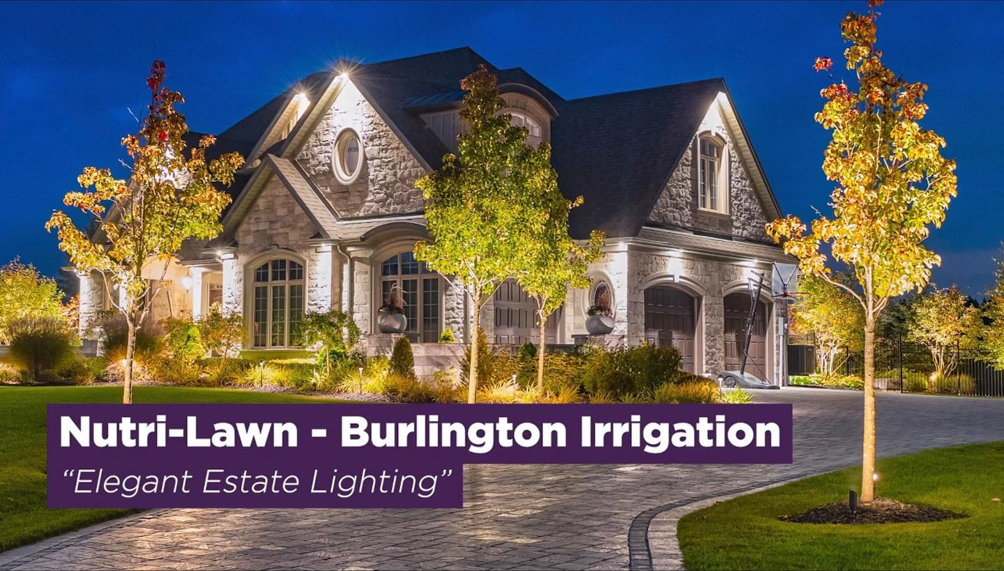 BurlingtonLighting