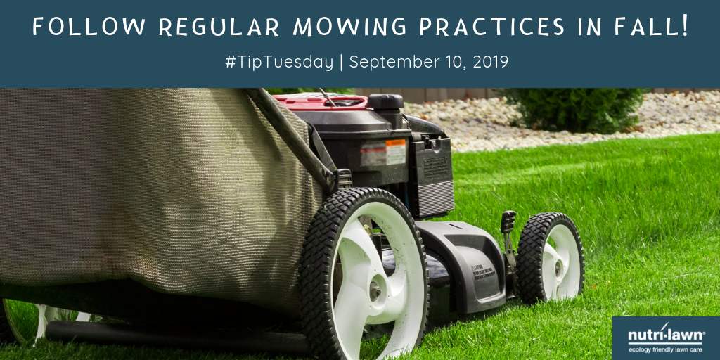 Maintain mowing practices in fall.