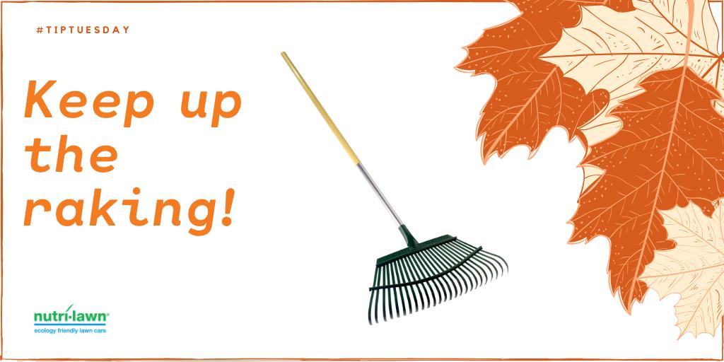 Continue to rake.