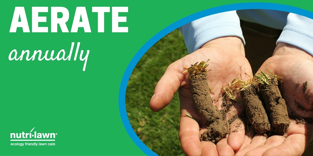 An annual aeration can do a wealth of good for your lawn, including helping to remove excess thatch.