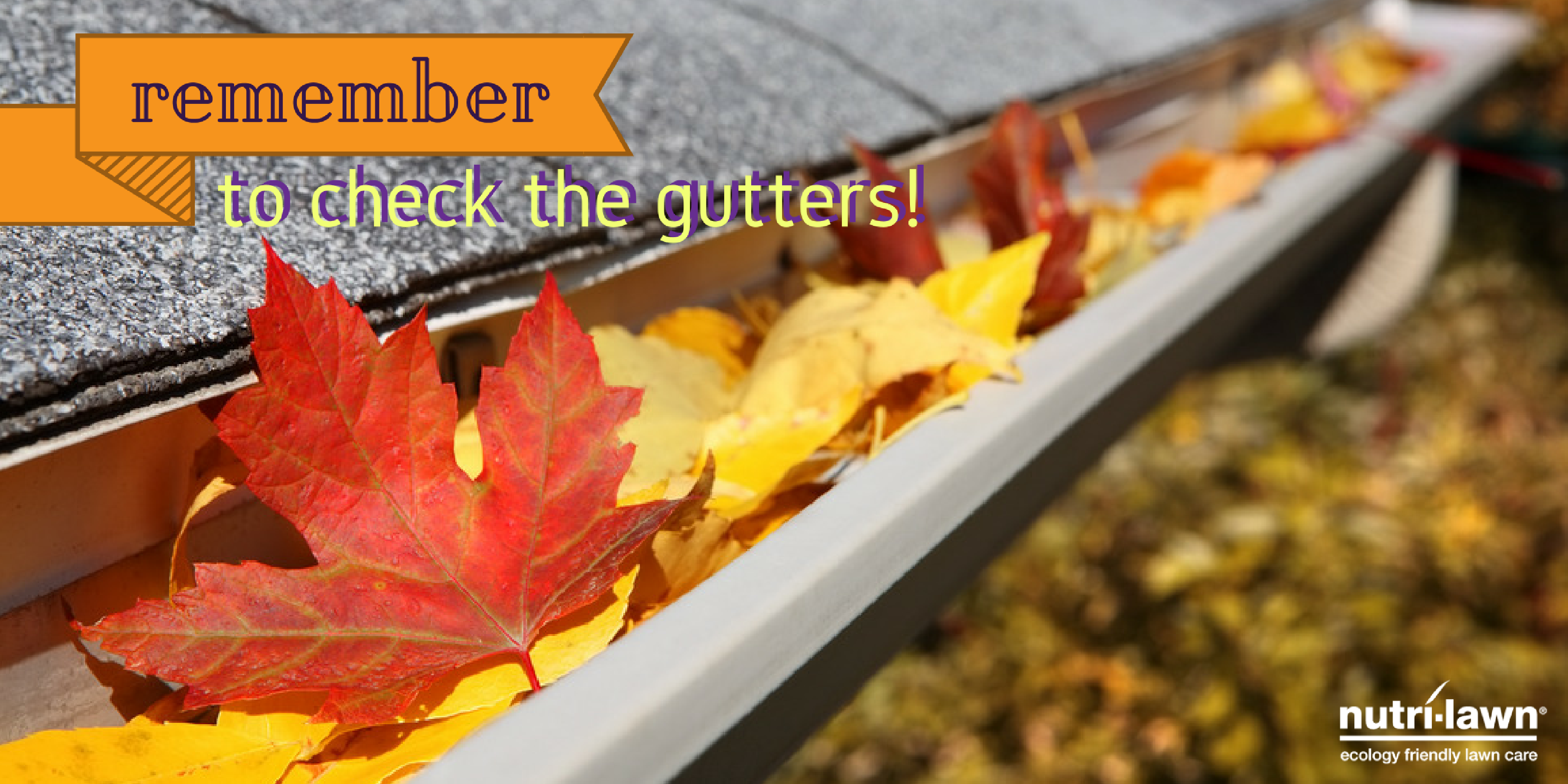 Before you finish up, grab the ladder and check those gutters.