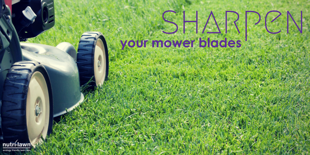Ensure that your mower blades are always sharp.