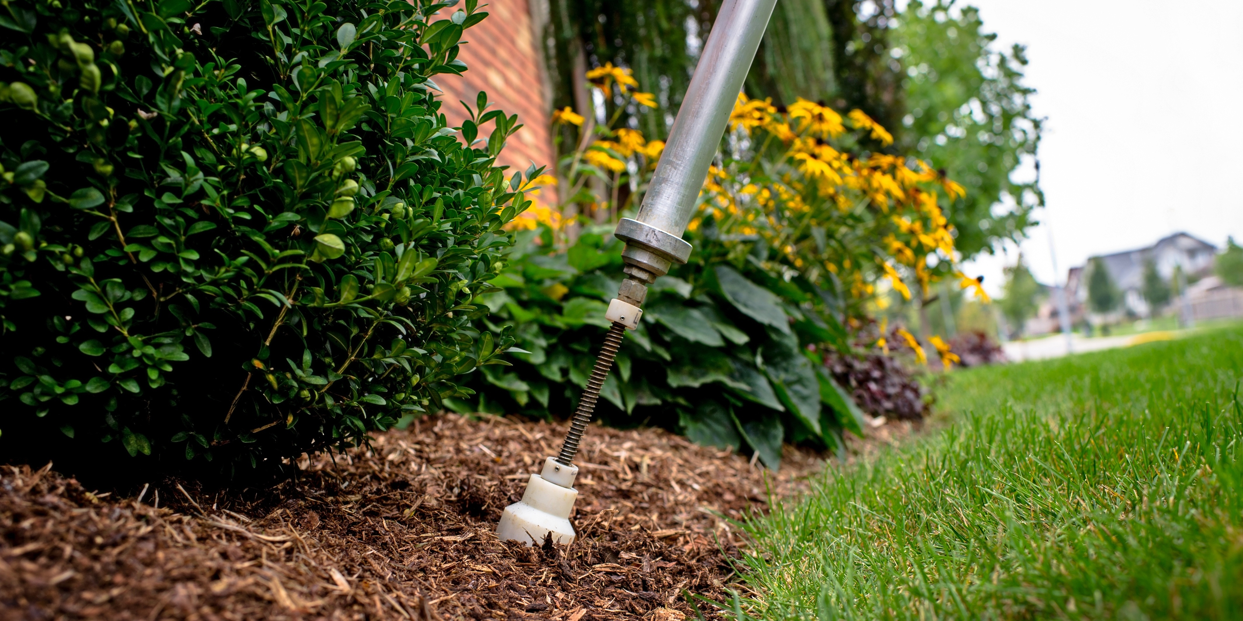Fertilizing your trees & shrubs helps to protect their beauty and promote their growth.