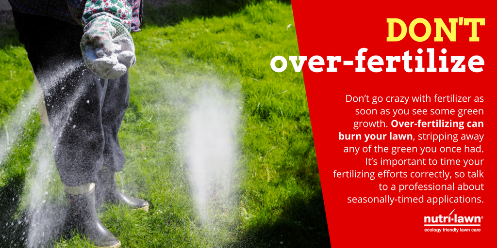 If you put too much fertilizer down, you could burn the lawn and leave it with undesirable yellow patches or lines.