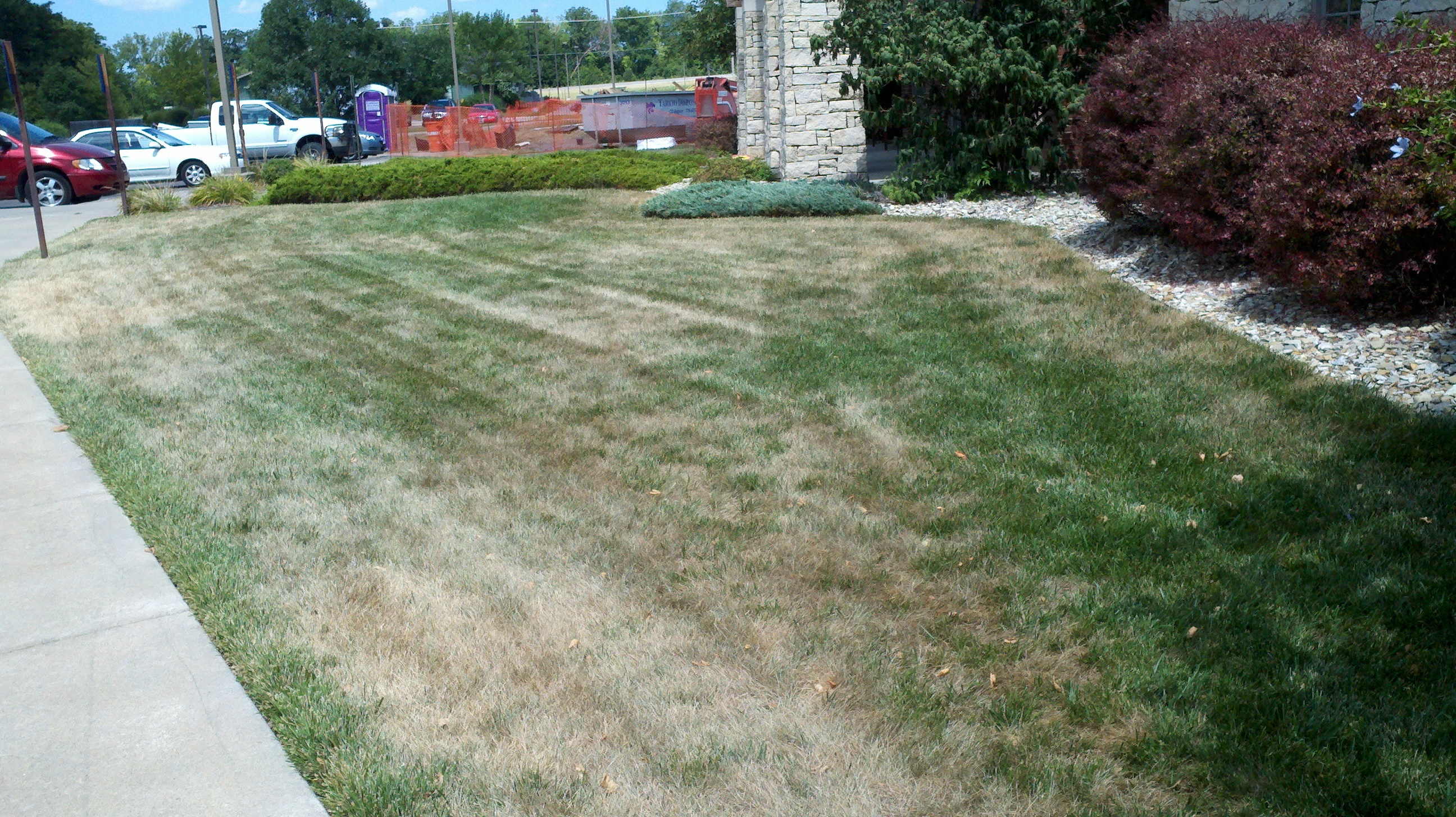 Grass is a plant, and like any other plant has growing conditions it prefers and will thrive in.