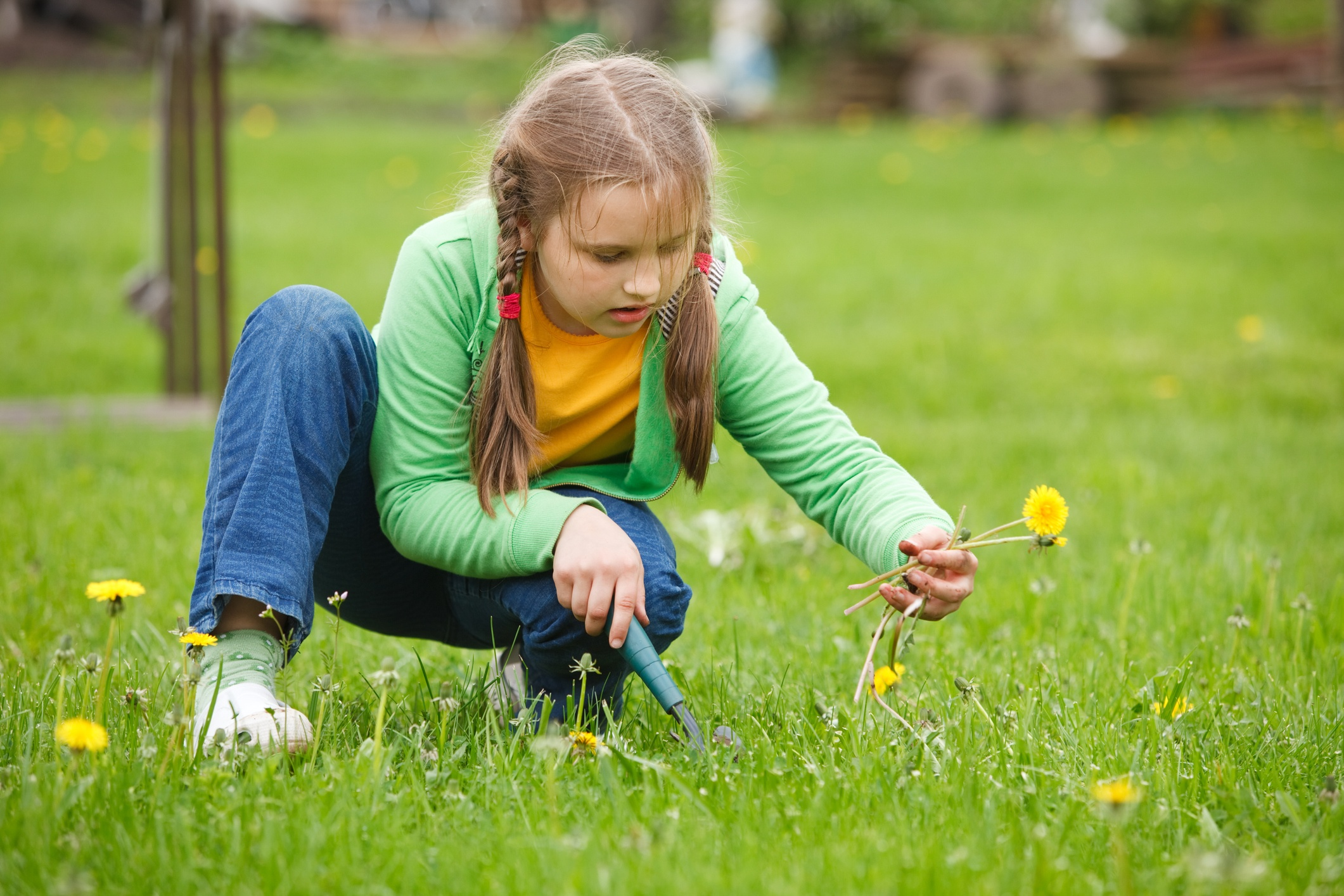 Weeds are a hassle to deal with in spring.