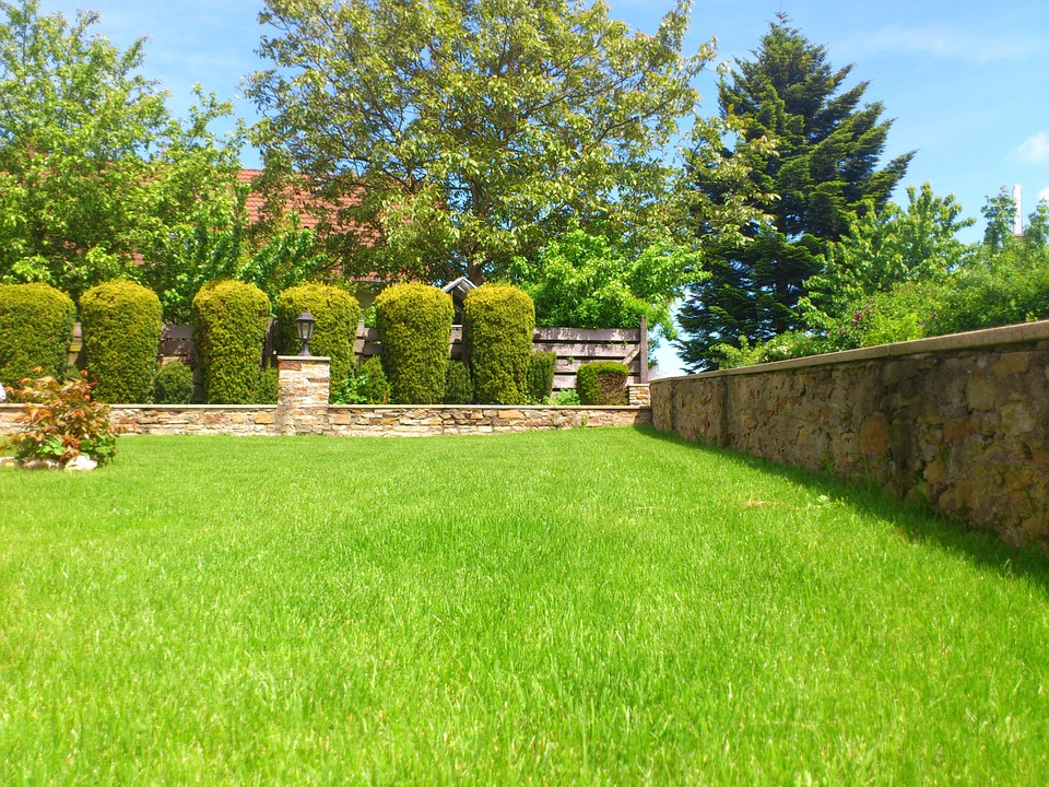 how to grow grass terraria