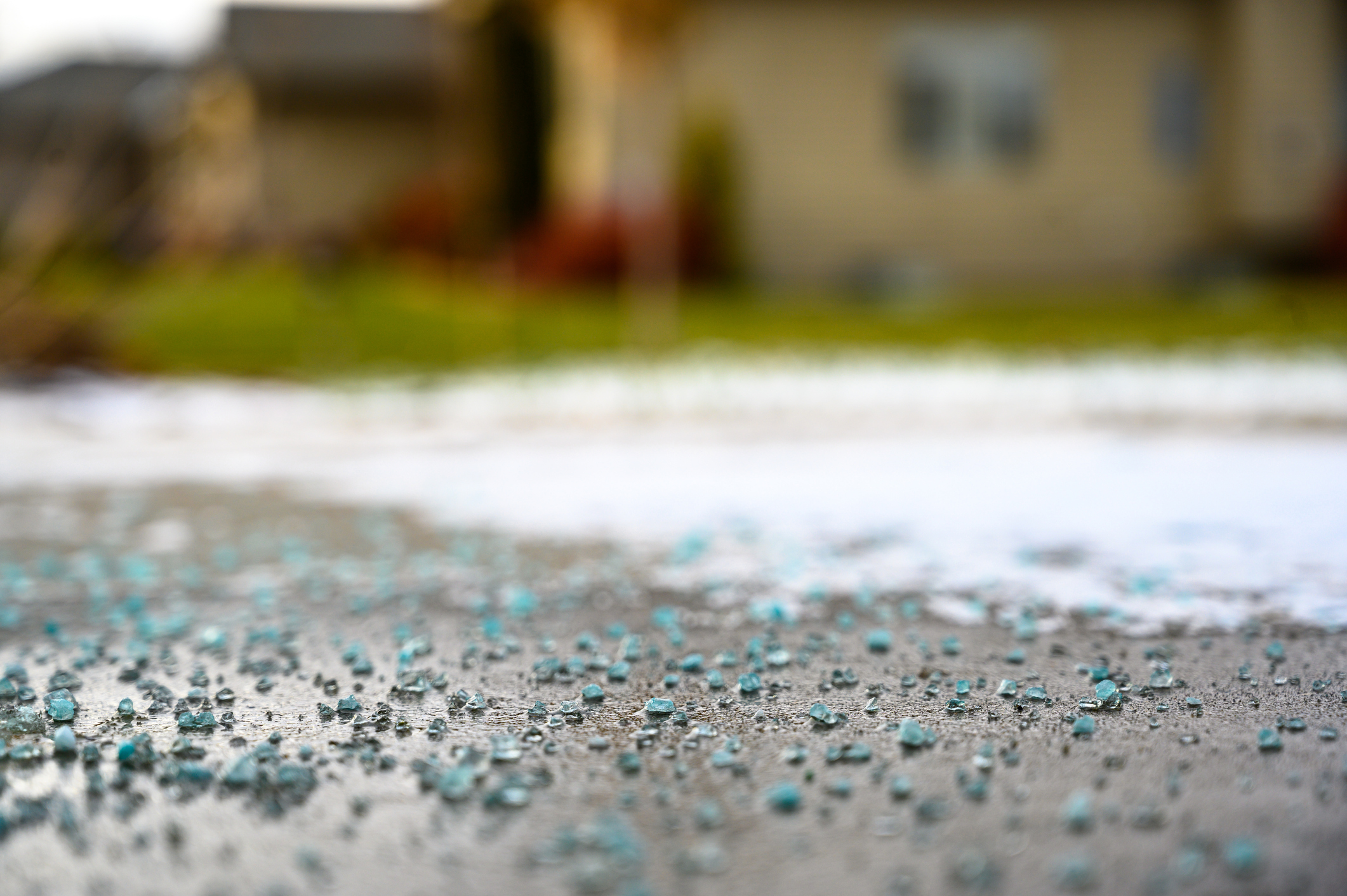 Many lawns suffer from salt damage in the winter.