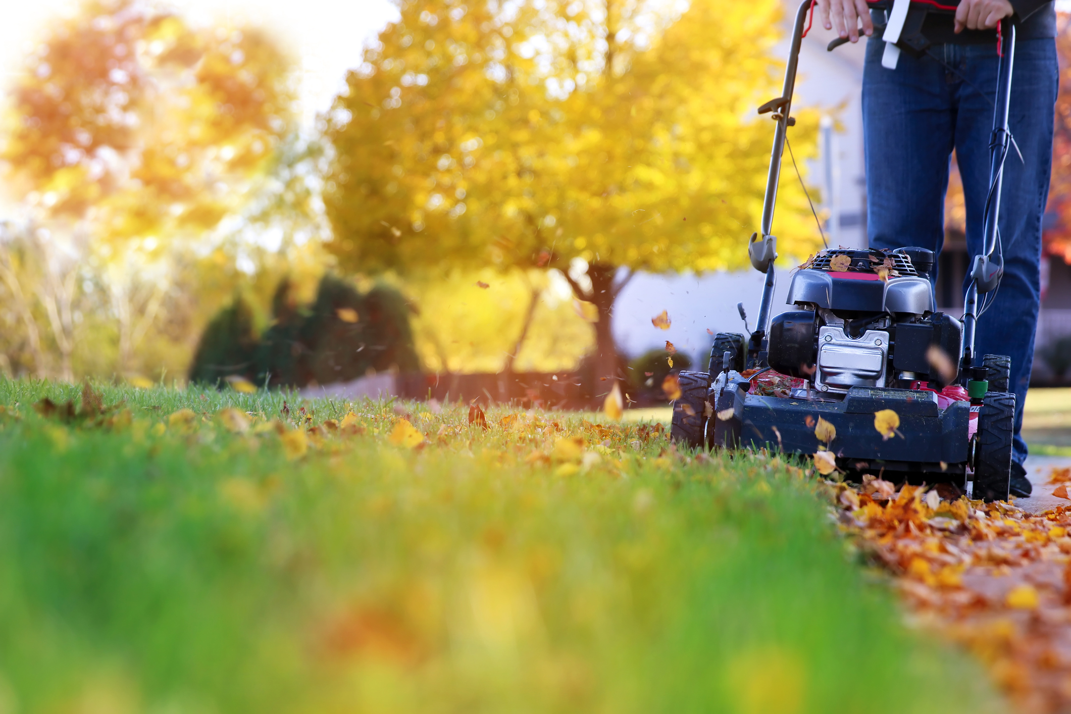 Fall is a great time for lawn care.