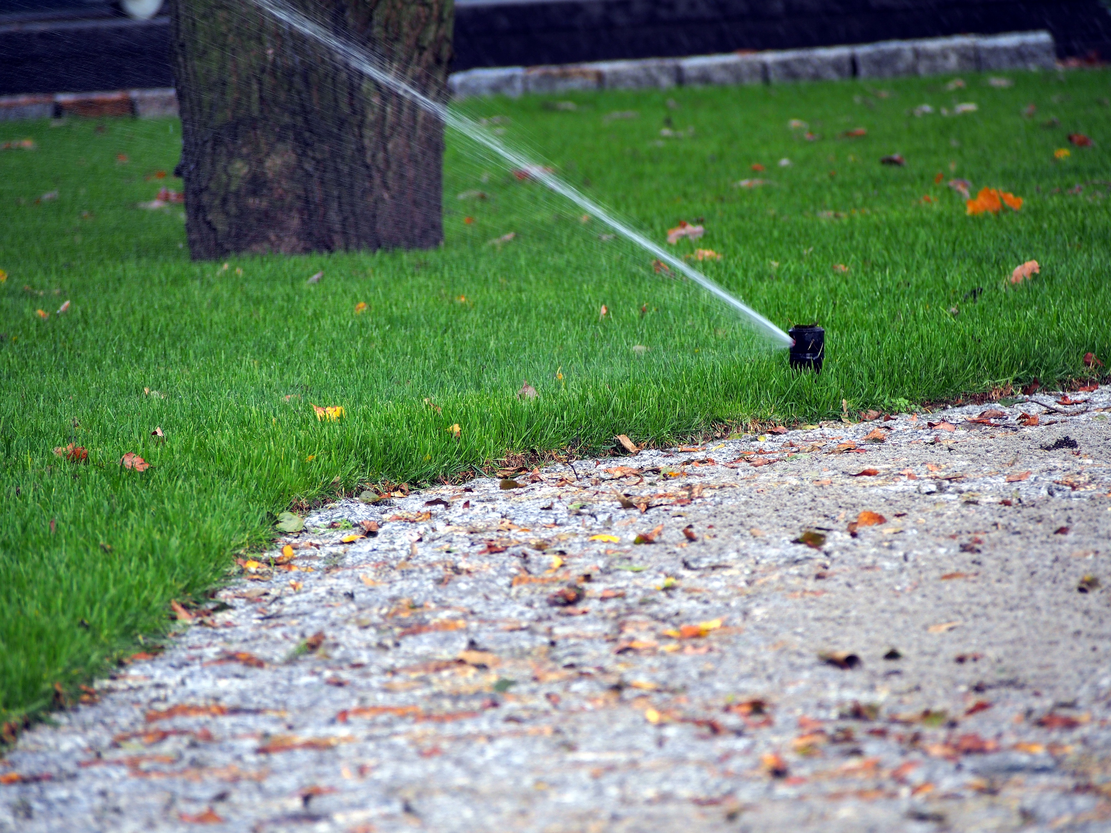 Getting all of the water out of your irrigation system is incredibly important.
