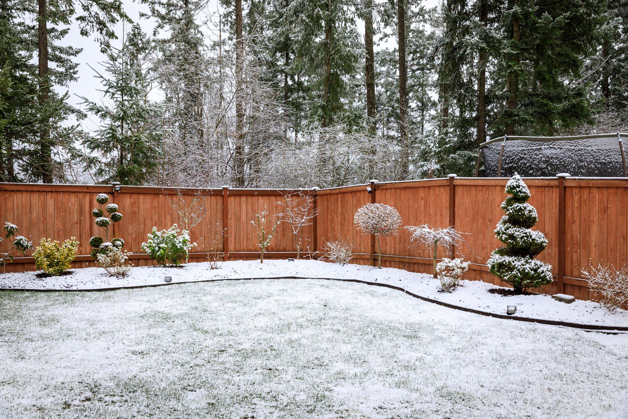 Prepare your lawn for winter.