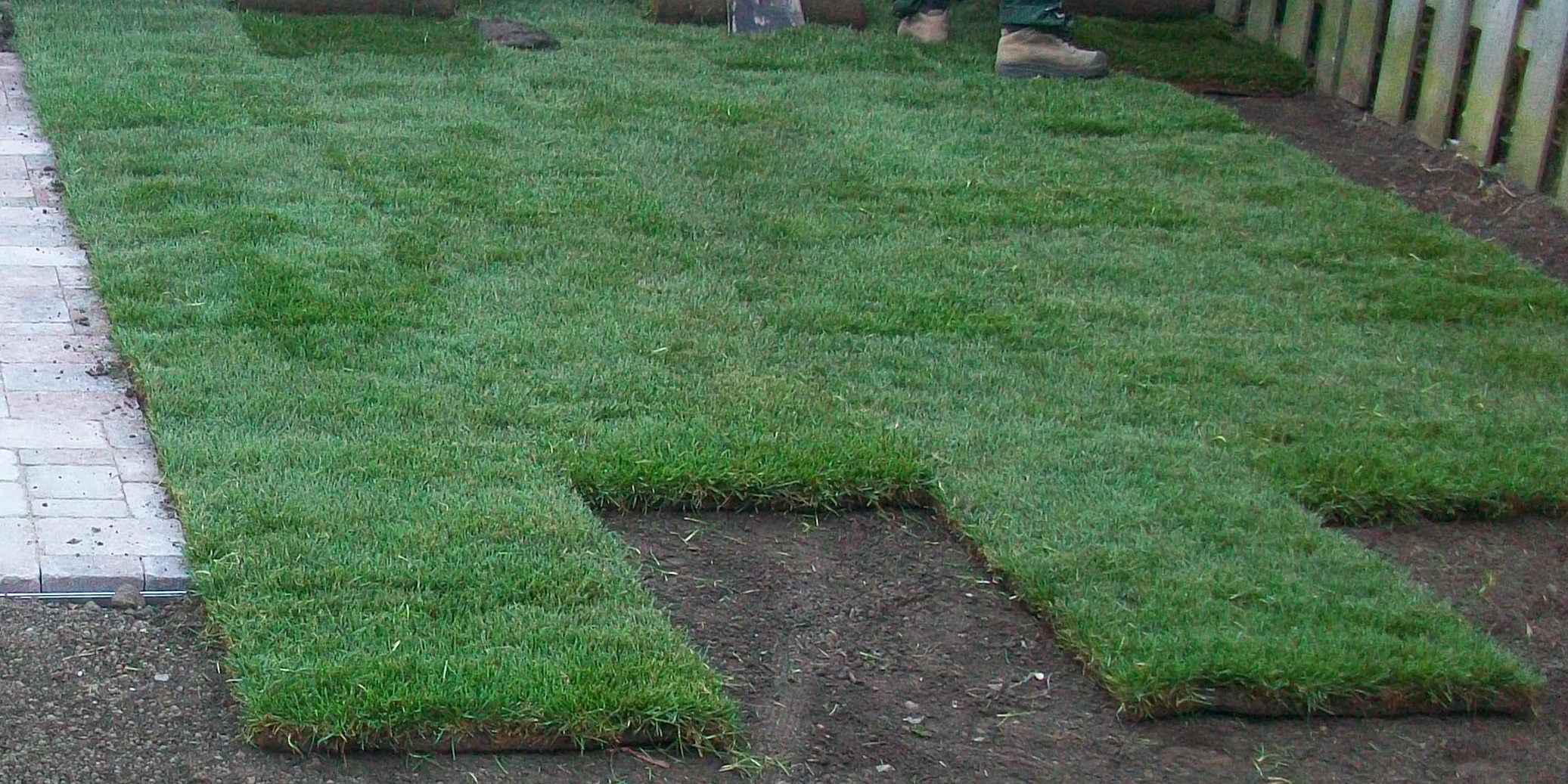 Major lawn repair and can be costly and time consuming.