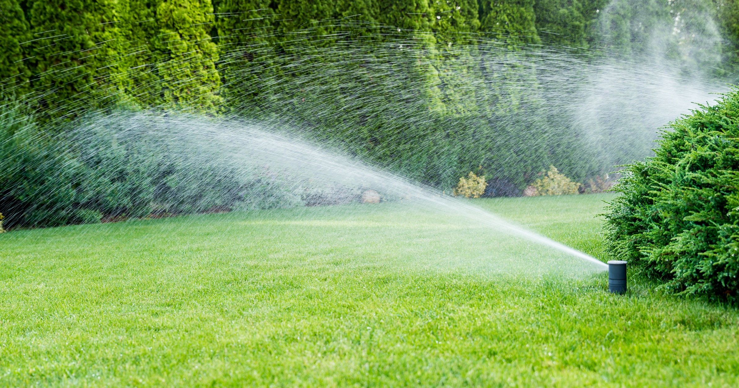 Your irrigation blowout should be done before winter