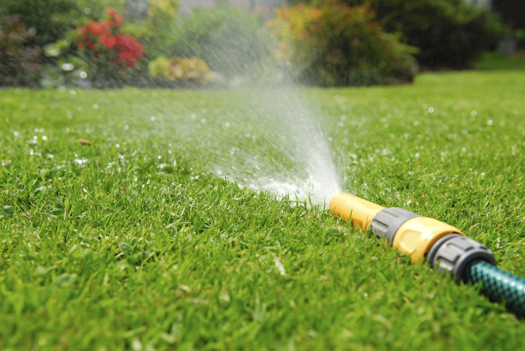 Watering techniques should be adjusted during the growing season.