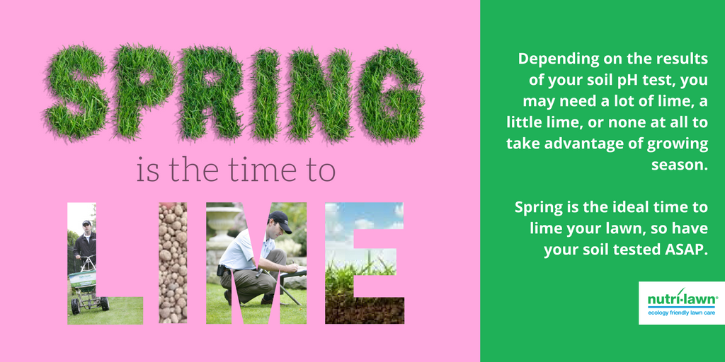 Neutralizing soil pH effectively frees up these essential nutrients, giving your lawn a better chance to thrive.