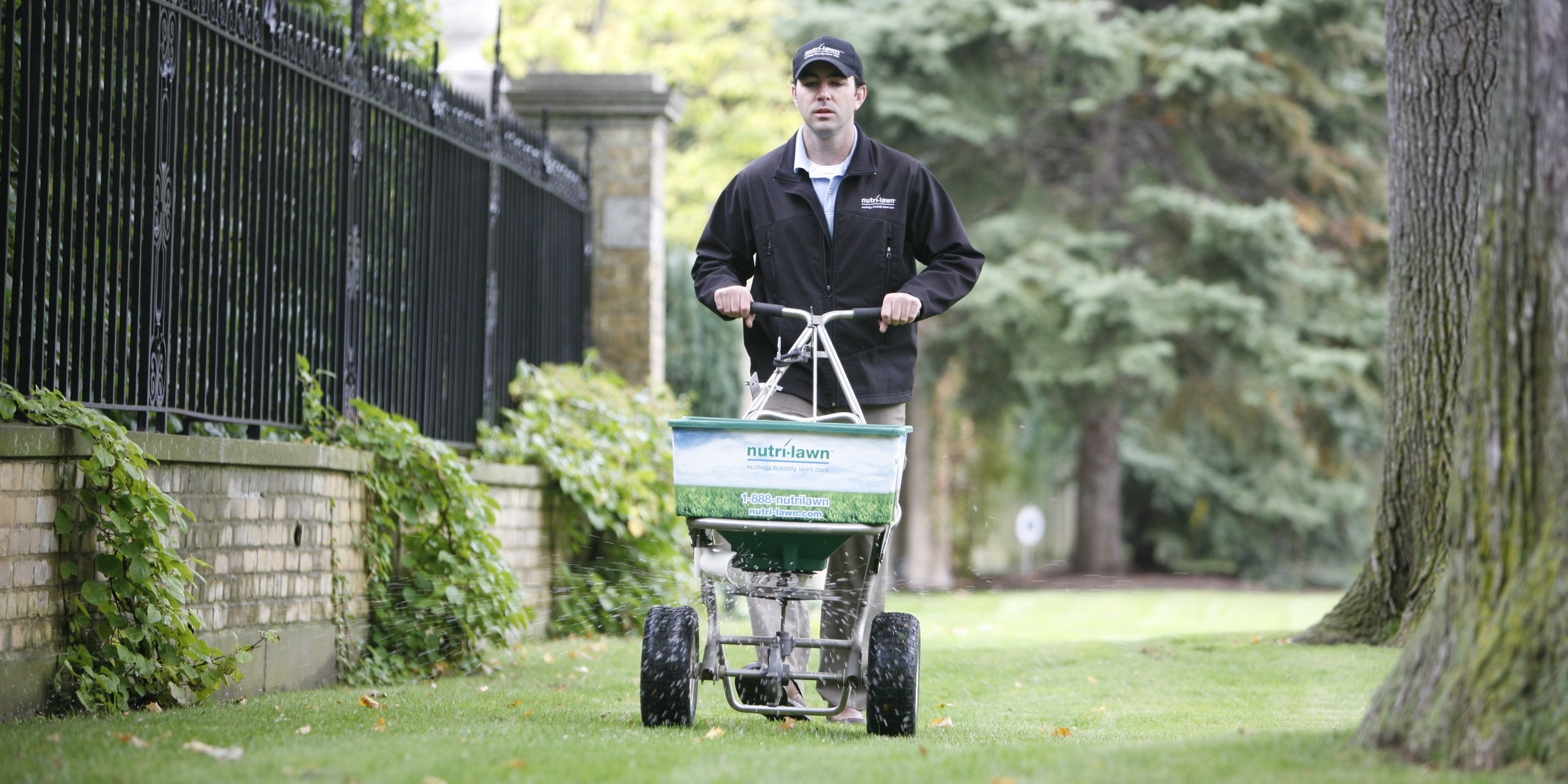 Fall is the ideal time for an annual lime application, since the lawn is actively growing.