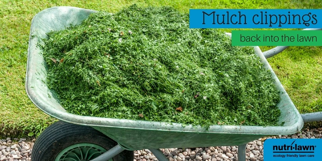 mulch-clippings-1.jpg
