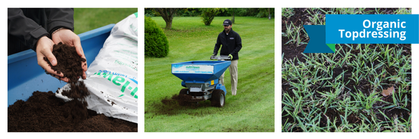 Topdressing is a sand or prepared soil mix which is thinly applied to the surface of the lawn.