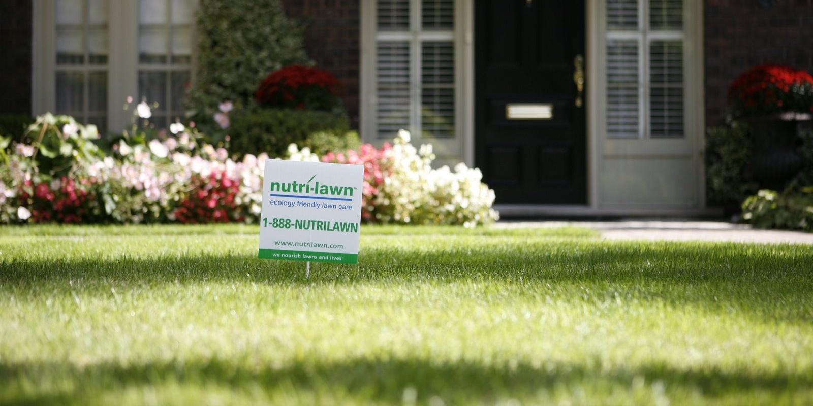 perfect-lawn.jpg