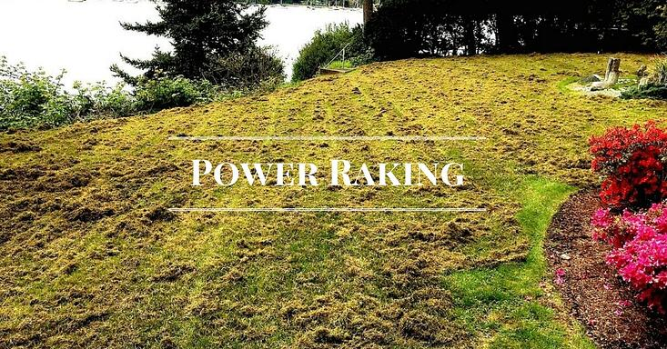 power-raking.jpg