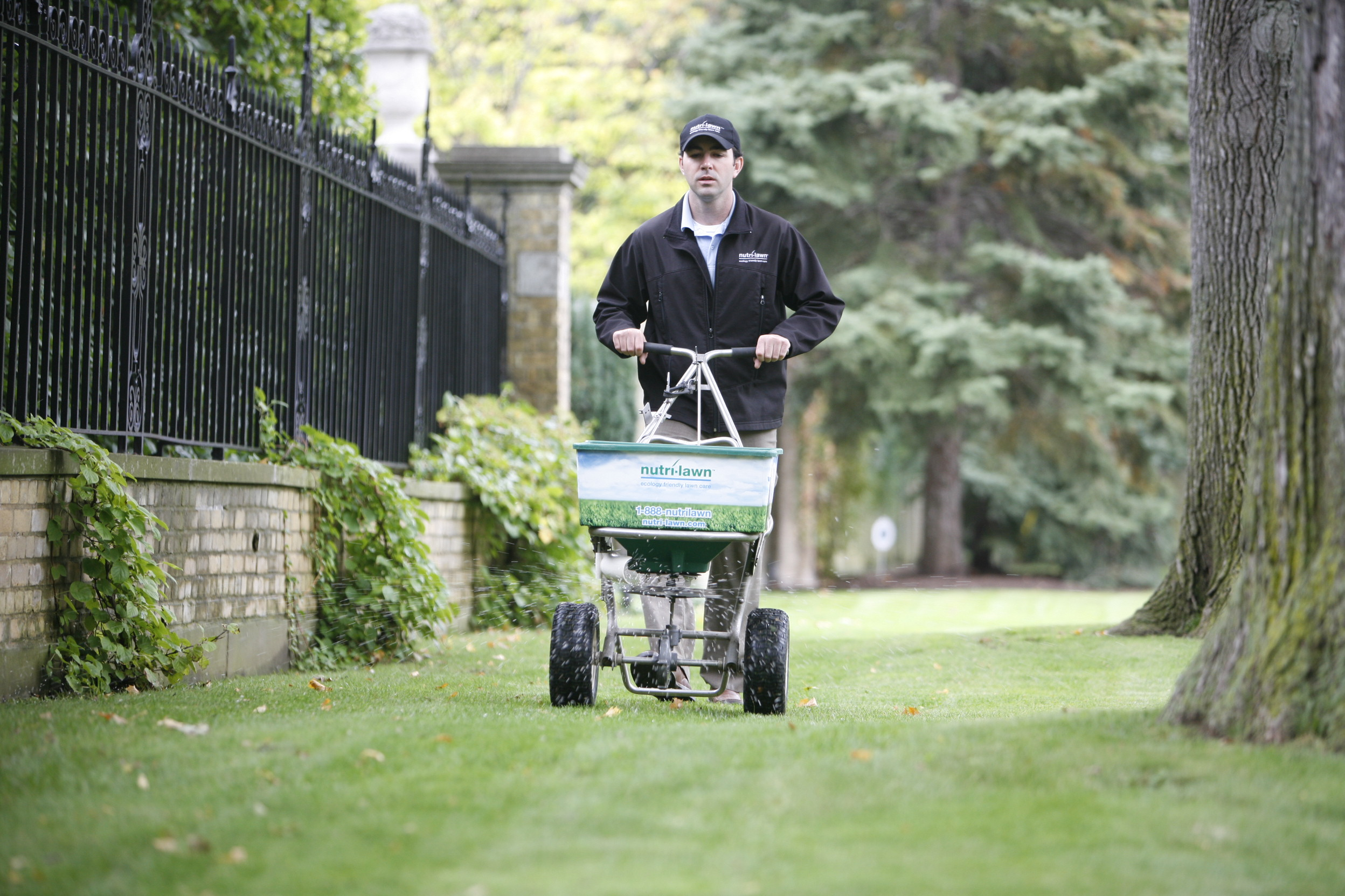 Spring is an ideal time to fertilize your lawn.