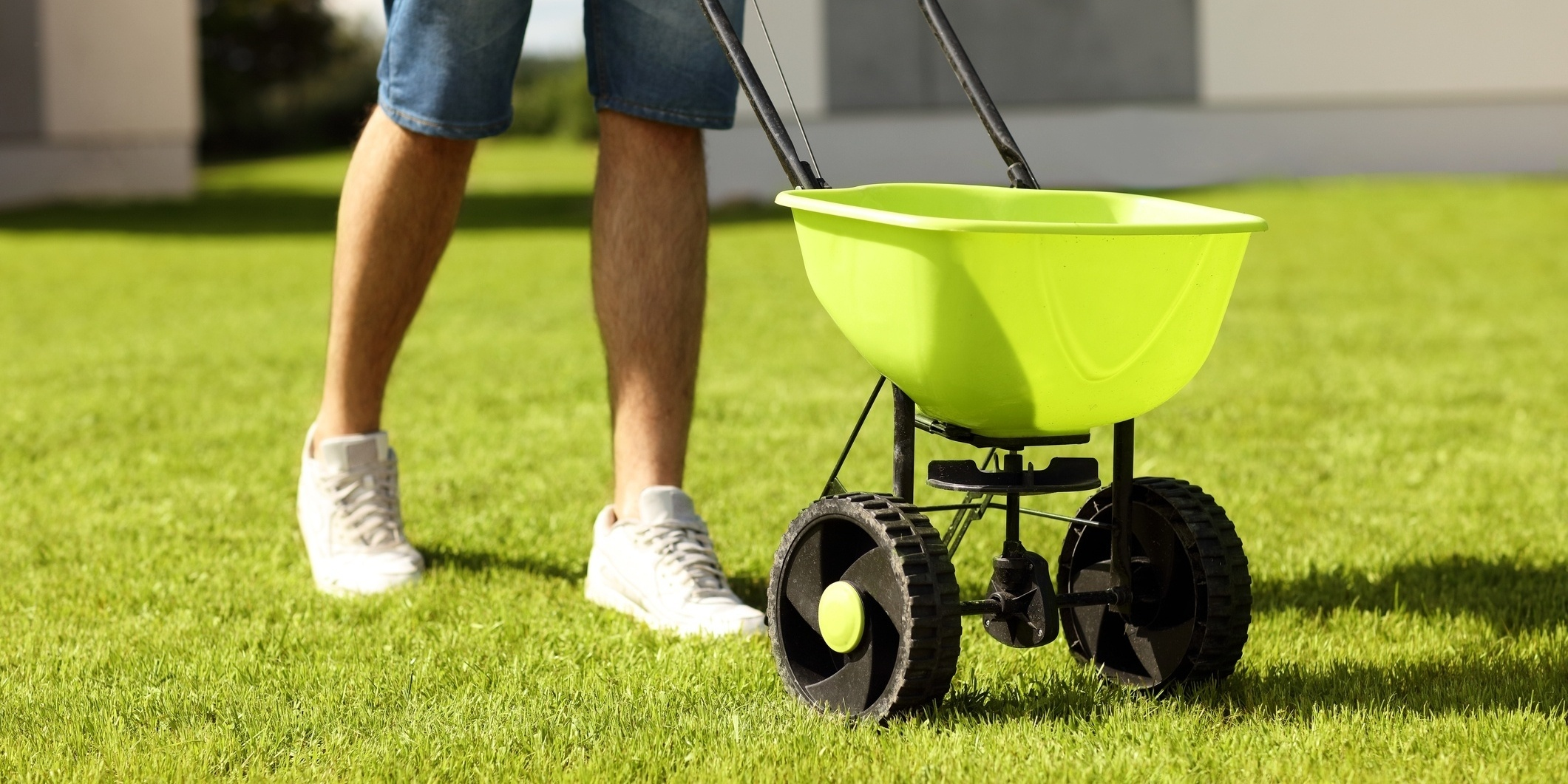 Use the right equipment when fertilizing.