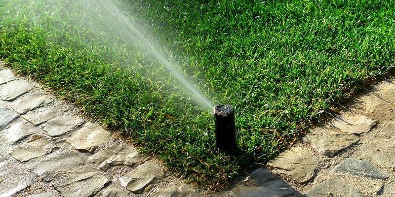 summer-irrigation.jpg