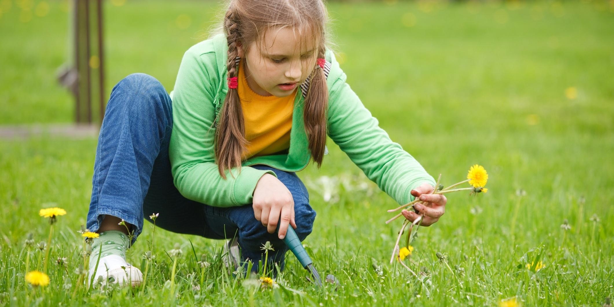 Good soil helps battle weeds.