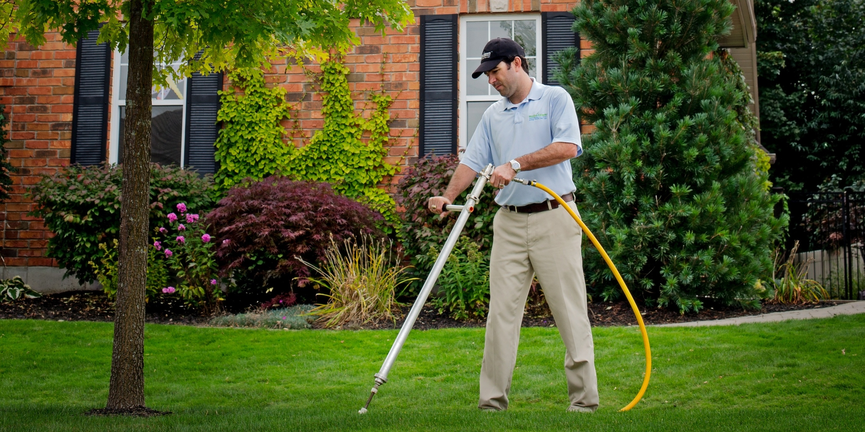 Protect your trees by fertilizing