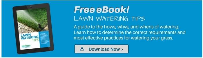 Download our  Watering Guide >