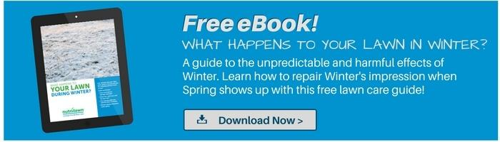 Download our  Winter eBook >