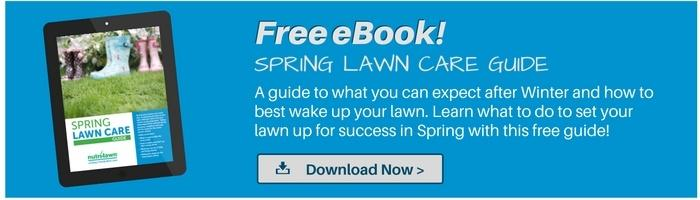 Download our Spring  Lawn Care Guide >