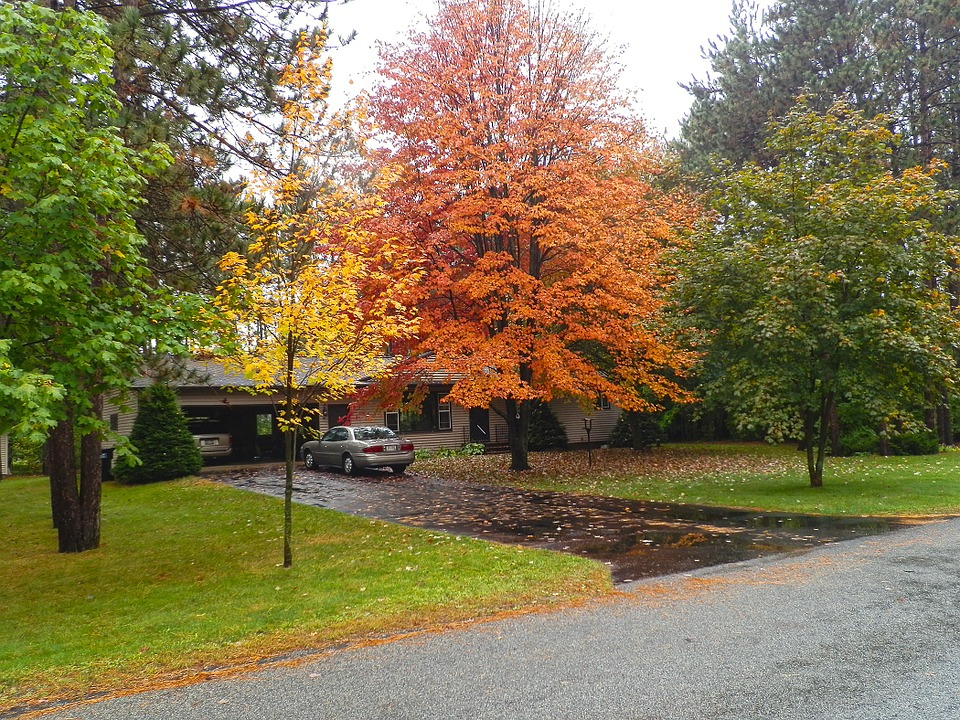 Fundamental Fall Lawn Care Services - Featured Image