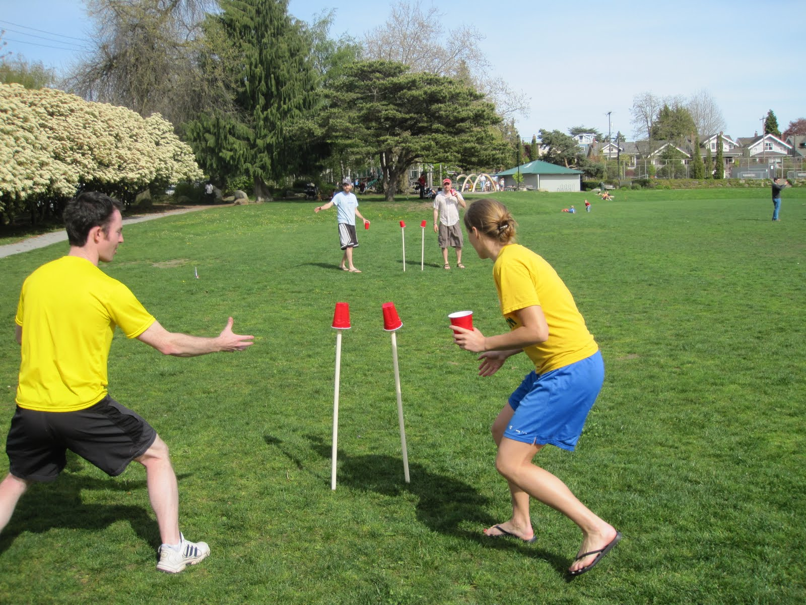 Fun Summer Game: Frisbee Cups - Featured Image