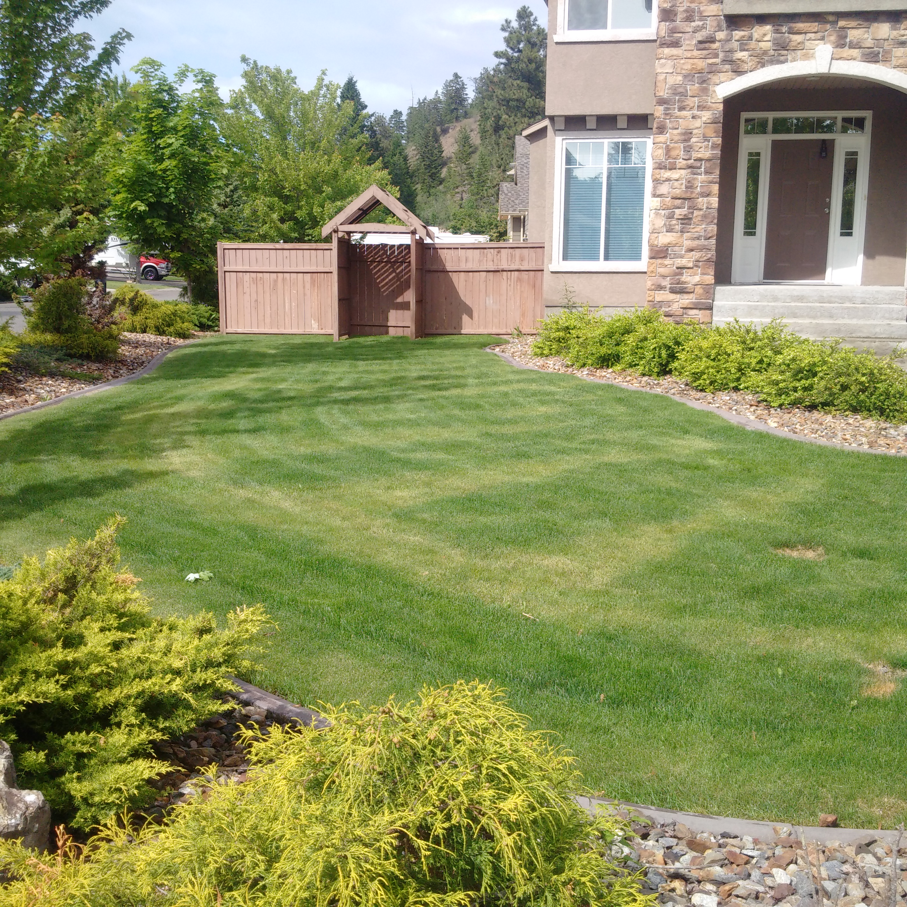 Lawn Fertilizing - Not Doing-it-Yourself - Featured Image