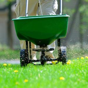 Lawn-Fertilizing-5