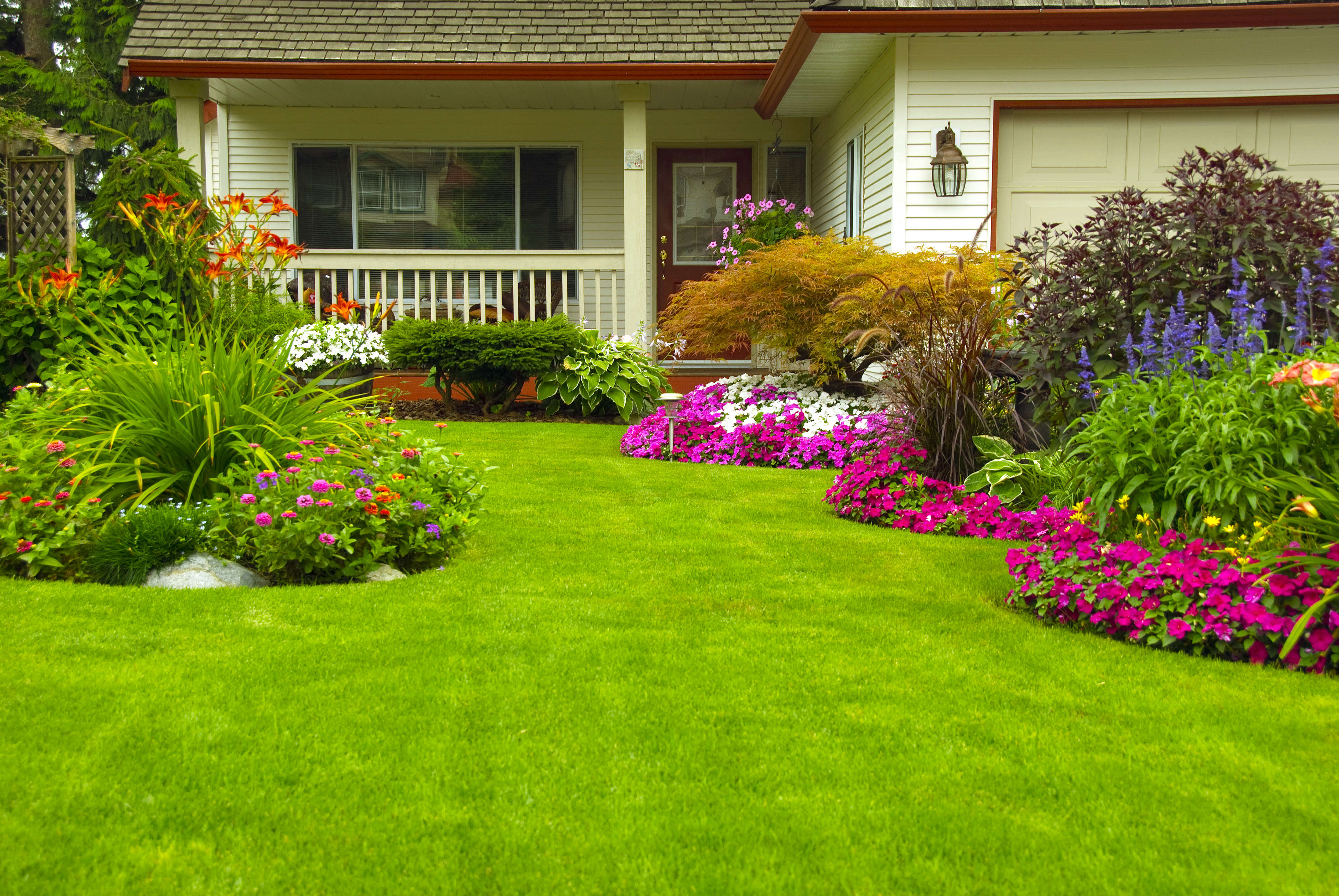 The Benefits Of Having Healthy Grass - Featured Image