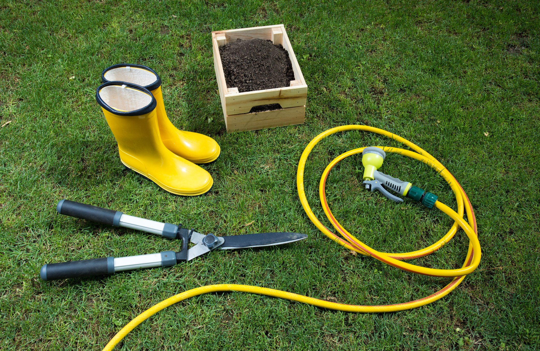 5 Important Tips For Spring Lawn Care - Featured Image