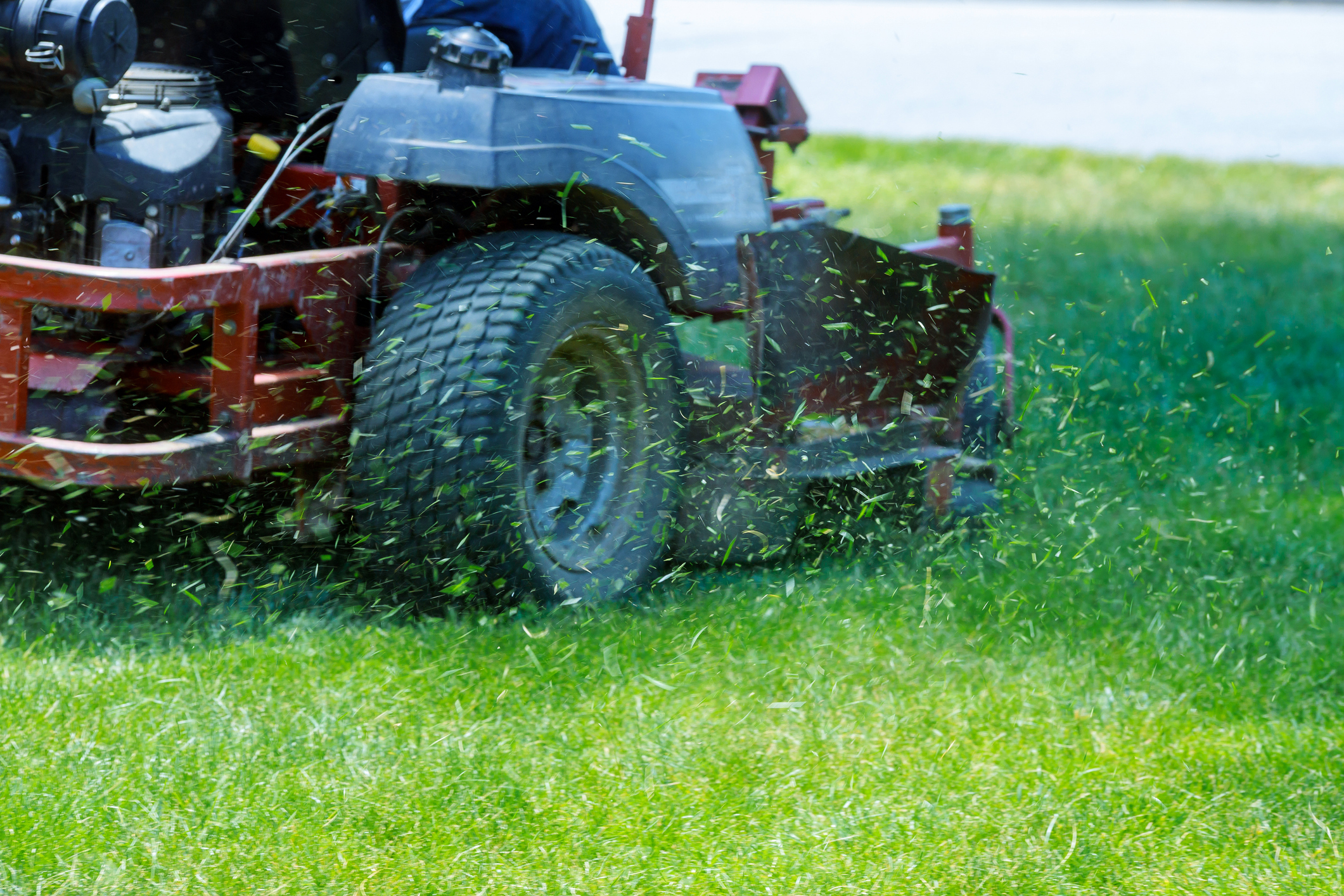 Mow Your Way To A Healthy Lawn This Spring - Featured Image