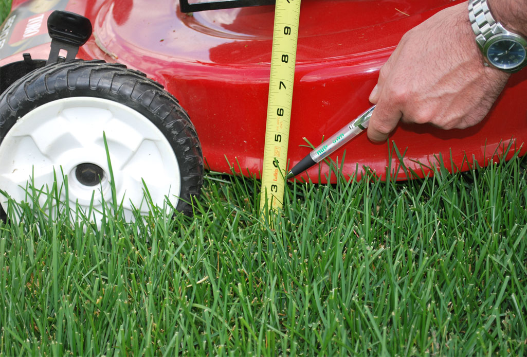 Spring Lawn Mower Maintenance - Featured Image